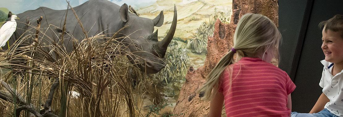 Nashorn-Diorama mit einem Mädchen und Jungen im rechten Vordergrund