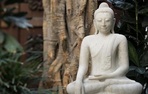Eine Buddhastatue vor einem Baum