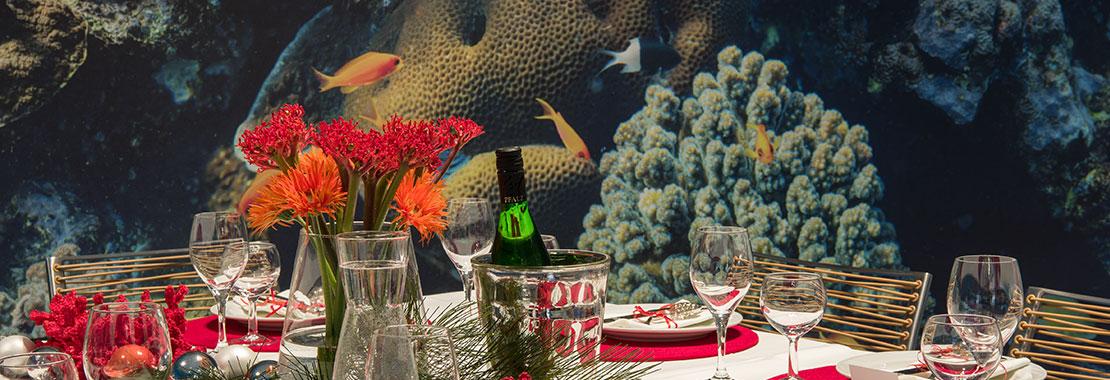 Weihnachtlich gedeckter Tisch. Im Hintergrund das Panoramabild eines Korallenriffs.