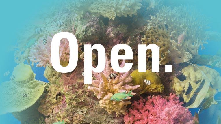 """Model eines Korallenriffs taucht aus einer türkis farbenden Farbfläche auf, darüber das Wort """"Open."""" – geöffnet"""