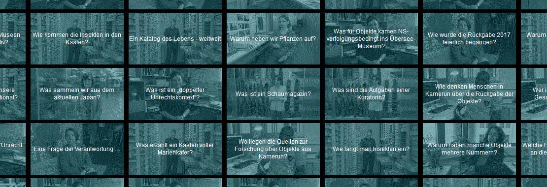 Screenshot mit Kacheln, auf denen Fragen stehen