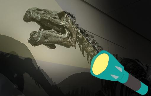 Ein Dinosaurierskelett, beleuchtet von einer graphischen Taschenlampe
