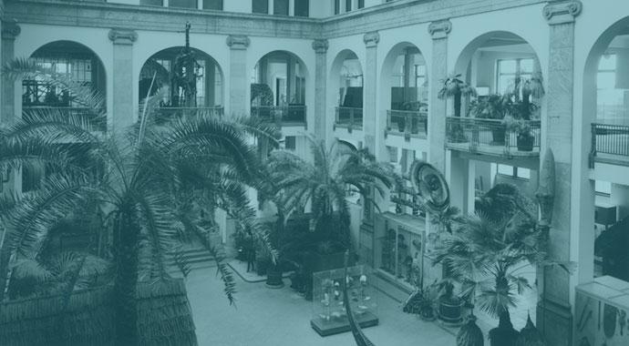 Lichthof des Übersee-Museums.